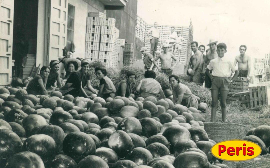 Foto antigua de la huerta de Valencia. Vicente Peris productor de melón, frutas y verduras