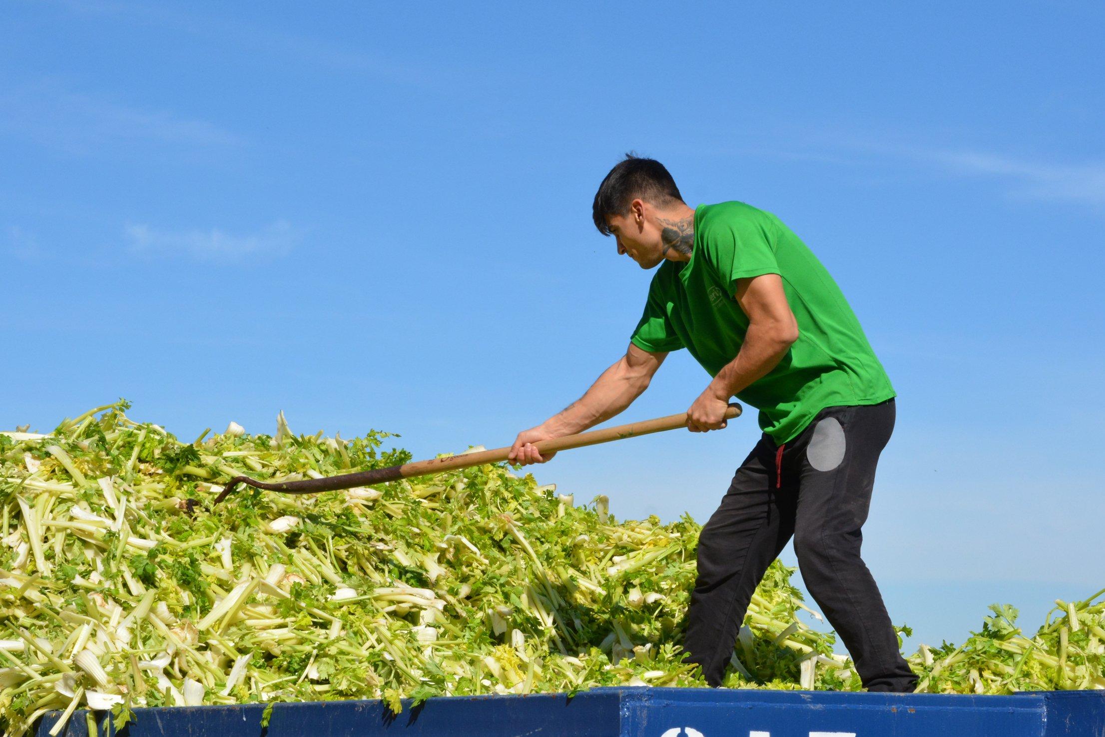 Restos de la industria agroalimentaria gestionados con un fin útil